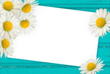 Frame with daisies on the wooden background