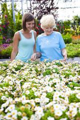 Nonna e nipote con i fiori