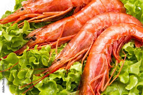 prawns on fresh salad