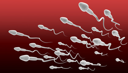 Sperm Swimming Perspective