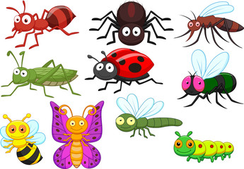 Insect cartoon collection set