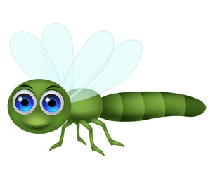 Dragonfly cartoon