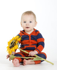 Charming baby boy sitting with sunflower in hands