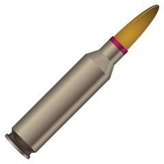 Sleeve with a bullet