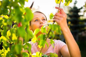 Pretty female gardener taking care of her lovely garden on a spr
