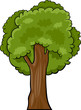 cartoon illustration of deciduous tree