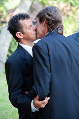 Gay Couple Kiss at Wedding