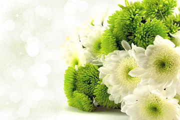 White and green chrysanthemum bouquet.