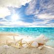 Frohe Reise:  Auszeit in der Karibik :)