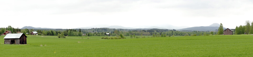 Panoramic view of Swedish landscape