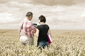 Farmer and agricultural engineer in the field discuss