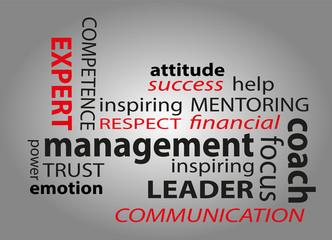 concetto di management con testo su sfondo sfumato
