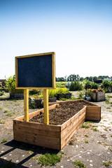 Stadtacker - urban gardening