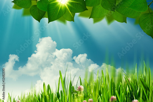On the meadow, abstract natural backgrounds