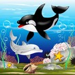 Dolphin and Killer Whale Cartoon Delfino e Orca nell'Oceano