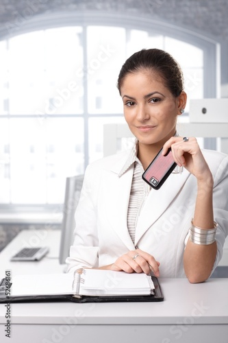 Businesswoman with mobile and organizer