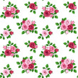 Vector seamless pattern with red and pink roses on white.