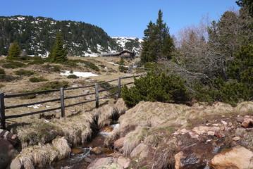 Wandern an der Schneegrenze