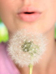 Girl blowing on dandelion close up