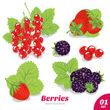 Set of strawberries, blackberries, red currants