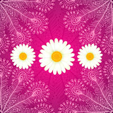 Vector chamomiles on pink ornate background