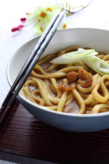 japanese cuisine, pork curry udon noodles in bowl