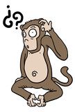 Monkey question
