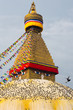 Boudhanath Stupa and birds