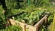 Entretien Jardinage