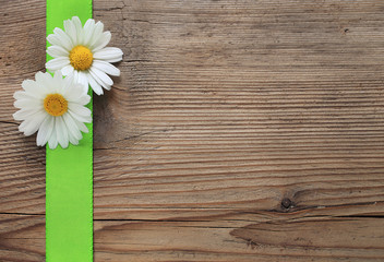 Margeriten mit grüner Schleife auf Holz
