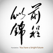 Chinese calligraphy, sentence: You have a bright future