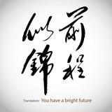 Fototapety Chinese calligraphy, sentence: You have a bright future