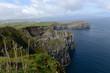 Falaise de l'île de Sao Miguel aux Açores