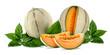 Meloni su sfondo bianco