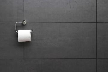 Toilettenpapier02