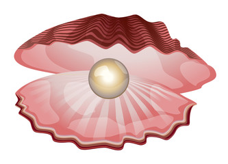 Shell with pearl
