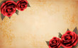 Retro background with beautiful red rose and old paper. Vector i