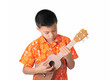 Ukulele Player