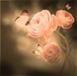 Obrazy na płótnie, fototapety, zdjęcia, fotoobrazy drukowane : Bouquet of pink roses against a dark background  butterfly