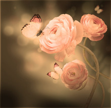 """Постер, картина, фотообои """"Bouquet of pink roses against a dark background butterfly"""""""