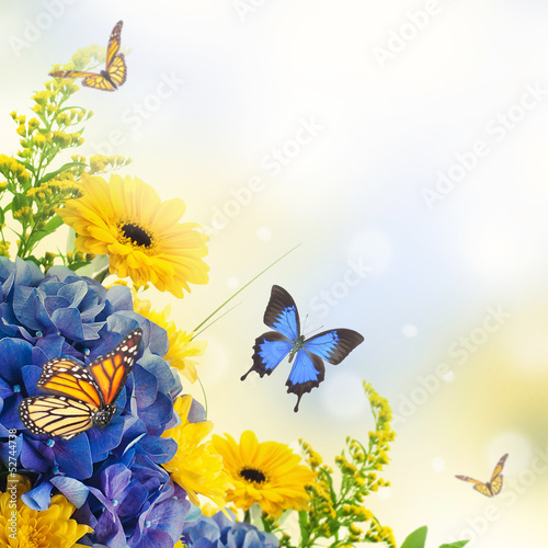 Poster Bouquet from blue hydrangeas and  butterfly, a flower background
