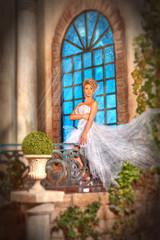 Невеста в замке