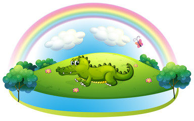 An alligator at the hill with a rainbow