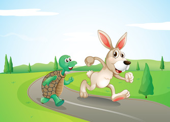 A bunny and a turtle running along the road
