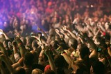 Fototapety Crowd cheering and hands raised at a live music concert