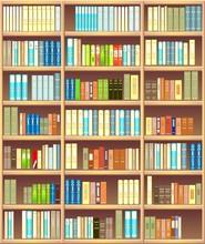 Regał pełen różnych kolorowych książek