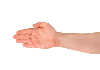 Opened hand palm gesture isolated