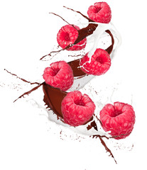 bilberry in chocolate and mill splash over white background
