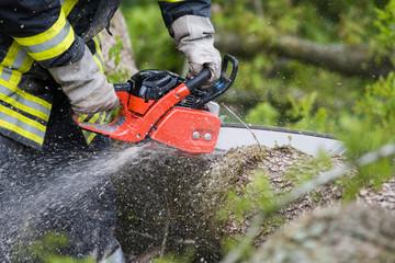 Mann zersägt mit Kettensäge Baumstamm