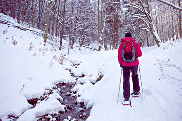 with snowshoes in a winter forest